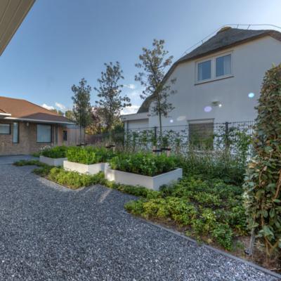 Moderne tuin in Kijkduin - Allure Tuinen