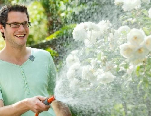 Tuintips: droogte en water geven